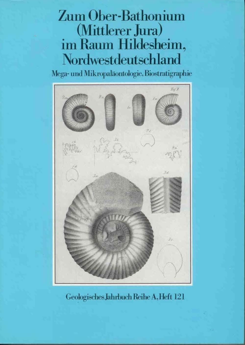JORDAN, R.: Zum Ober-Bathonium (Mittlerer Jura) im Raum Hildesheim, Norddeutschland. Mega- und Mikropaläontologie, Biostratigraphie.