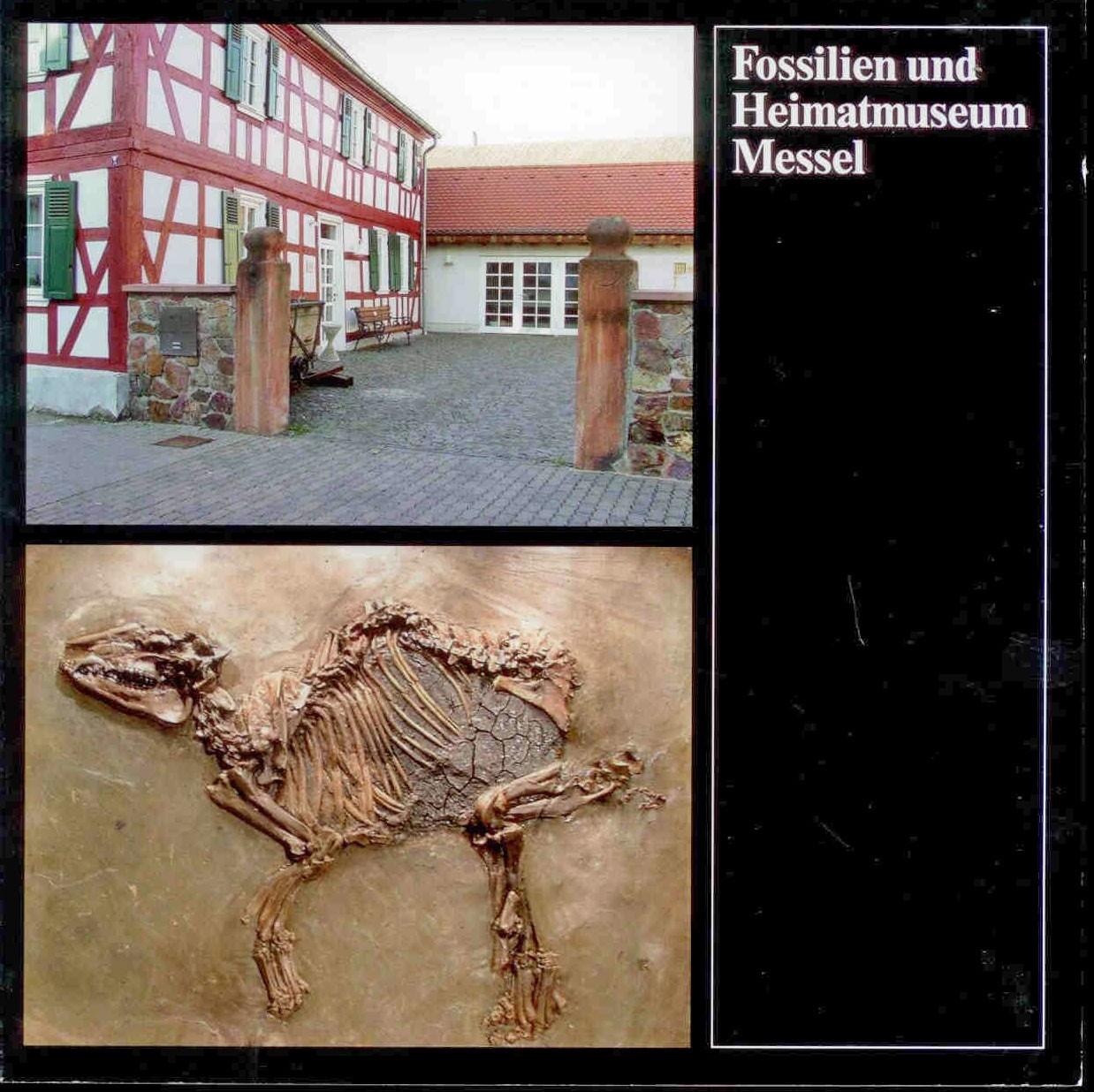 Höllwarth, M.: Fossilien und Heimatmuseum Messel